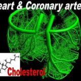 نقش شیر و فرآورده های لبنی در کاهش بیماریهای عروق کرونر قلب