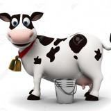 دامداران منتظر پاسخ حجتی/ خرید تضمینی شیرخام تمدید میشود؟